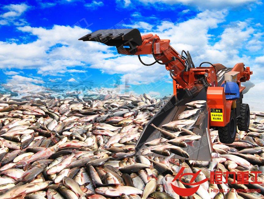 散装冻鱼船装卸改进项目-扒鱼机